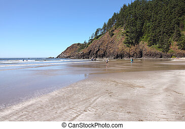 Indian beach Ecola state park, OR.
