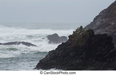 Indian Beach, Winter 2 - Photo of Indian Beach at Ecola ...
