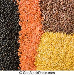 Collage of the four essential lentils used in Indian cooking