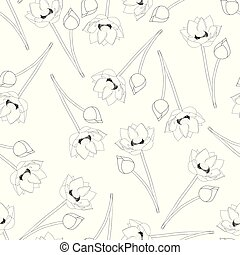 Indian lotus Outline on White Background2 - Indian lotus...