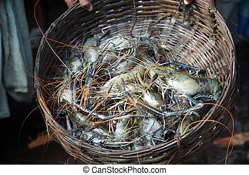 Indian sea crab in basket