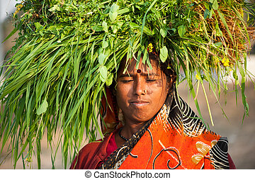 Indian villager woman carrying gree