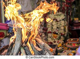 indian, yajna, godess, 神, 文化, 崇拝, 儀式, アイドル, 火