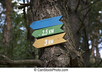 Indicators of the direction of movement and distance in the forest.