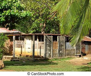indigène, maison, maïs, construction, île, nicaragua