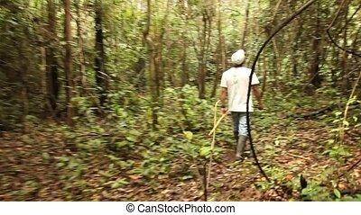 Indio In Rainforest