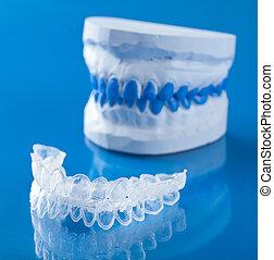 individu, tand, blad, voor, whitening