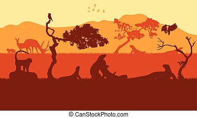 indonésie, komodo, coucher soleil, animal, île, paysage
