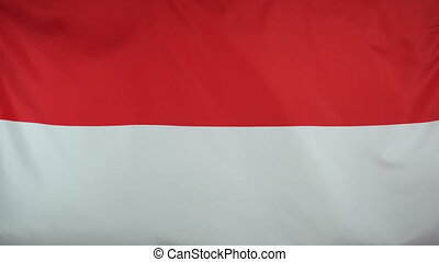 Indonesia Flag real fabric 4K - Textile flag of Indonesia...