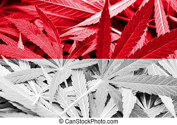 indonesia läßt, auf, cannabis, hintergrund., droge, policy., legalization, von, marihuana