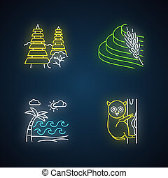 Indonesia neon light icons set. Tropical animal. Vacation in Indonesian islands. Explore exotic wildlife. Unique flora. Bali sightseeing, architecture. Glowing signs. Vector isolated illustrations