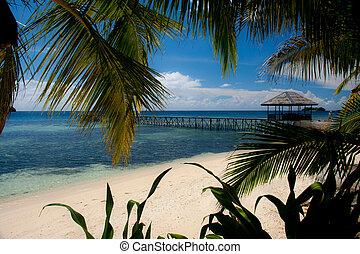 indonesia, togean, sulawesi, islas, paraíso