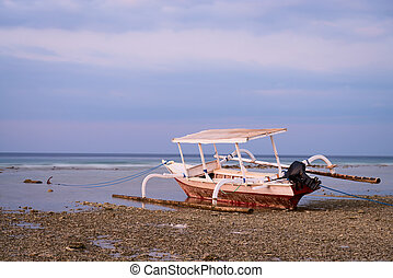 Indonesian boat on beach at low tide - Boat with wings on...