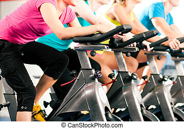Indoor bycicle cycling in gym - Group of four people ...