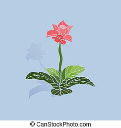 Indoor flower of pink color with shadow, on light blue background,