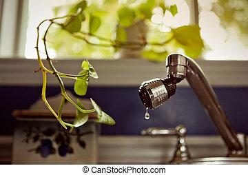 Indoor Plant asking for little bit of water (drop)