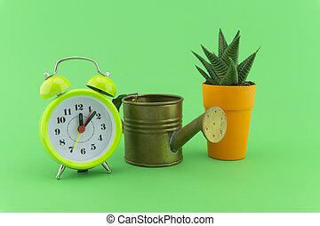 Indoor plant watering schedule concept