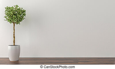 Indoor plants in an empty room with a white wall in the background