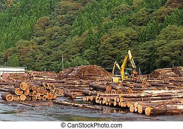 industria legname