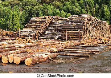 industria, legname