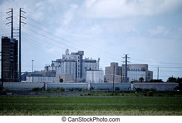 industrial, arroz, producción, facilidad