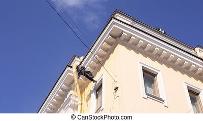 Industrial Climber Washes Facade of Building