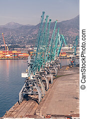 Industrial cranes in seaport