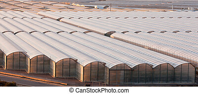 Industrial greenhouse to grow off-season veggies - Large...