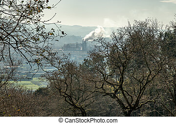 Scene of Trees and a Factory emitting smoke