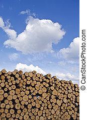 industrial, pila de madera, registro, pila, y, cielo