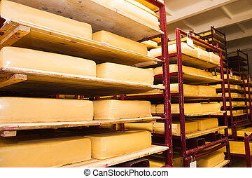 Industrial production of hard cheeses. Cheese is very tasty...