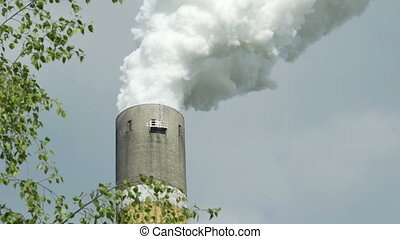 Industrial Smoke Stack Framed With Tree Closeup as CO2 to Oxygen Concept