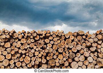 industriel, bois construction