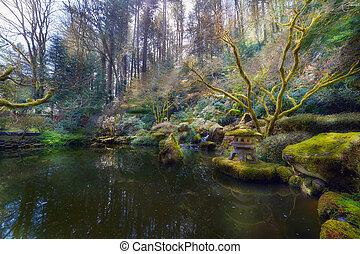 inférieur, étang, à, portland, jardin japonais