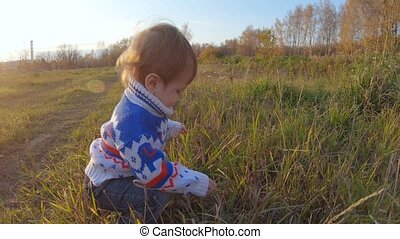 Infant boy walking on the edge of the forest and playing wildflowers