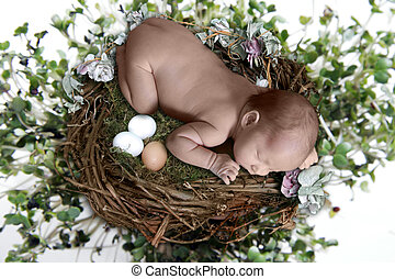 Infant Sleeping in Fantasy Setting - Newborn Sleeping atop...