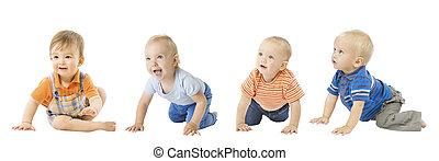 infante, grupo, encima, aislado, niños, gatear, bebé, blanco, bebé, niños, niños