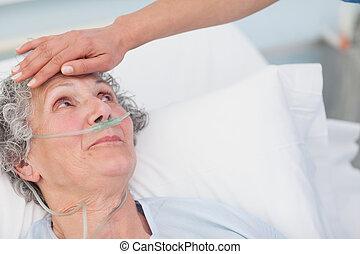 infermiera, toccante, il, fronte, di, uno, paziente