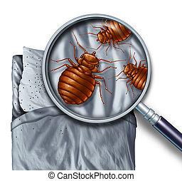 infestamento, insetto, letto