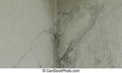 infiltration of water, mold and cracks in the wall and white roof of the house