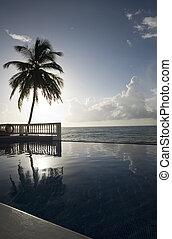 infinity pool with float caribbean sea - luxury infinity...