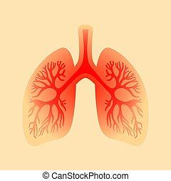 inflamación, icono, pulmones, vector