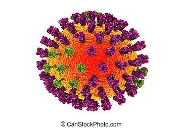 Influenza viruses illustration