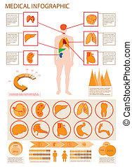 info, medisch, grafiek