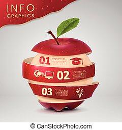 infographic, デザイン, 概念, 教育, テンプレート