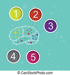 infographic brain concept