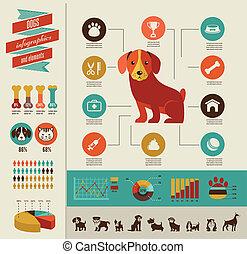 infographic, conjunto, perros, icono