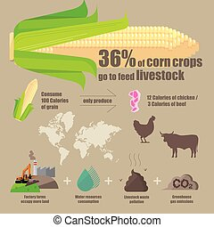Infographic diagram of the effectiveness and problems of planting crops used to feed livestock