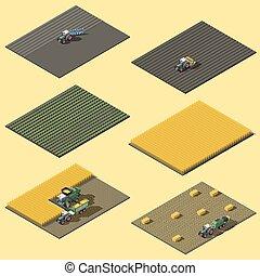 infographic, elementos, representando, campo, trabalho, de, maquinaria agrícola, isometric, ícone, jogo