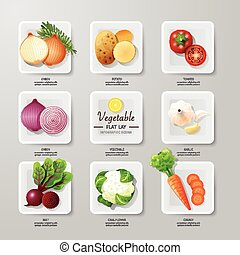 Infographic food vegetables flat lay idea. Vector illustration hipster concept. can be used for layout, advertising and web design.